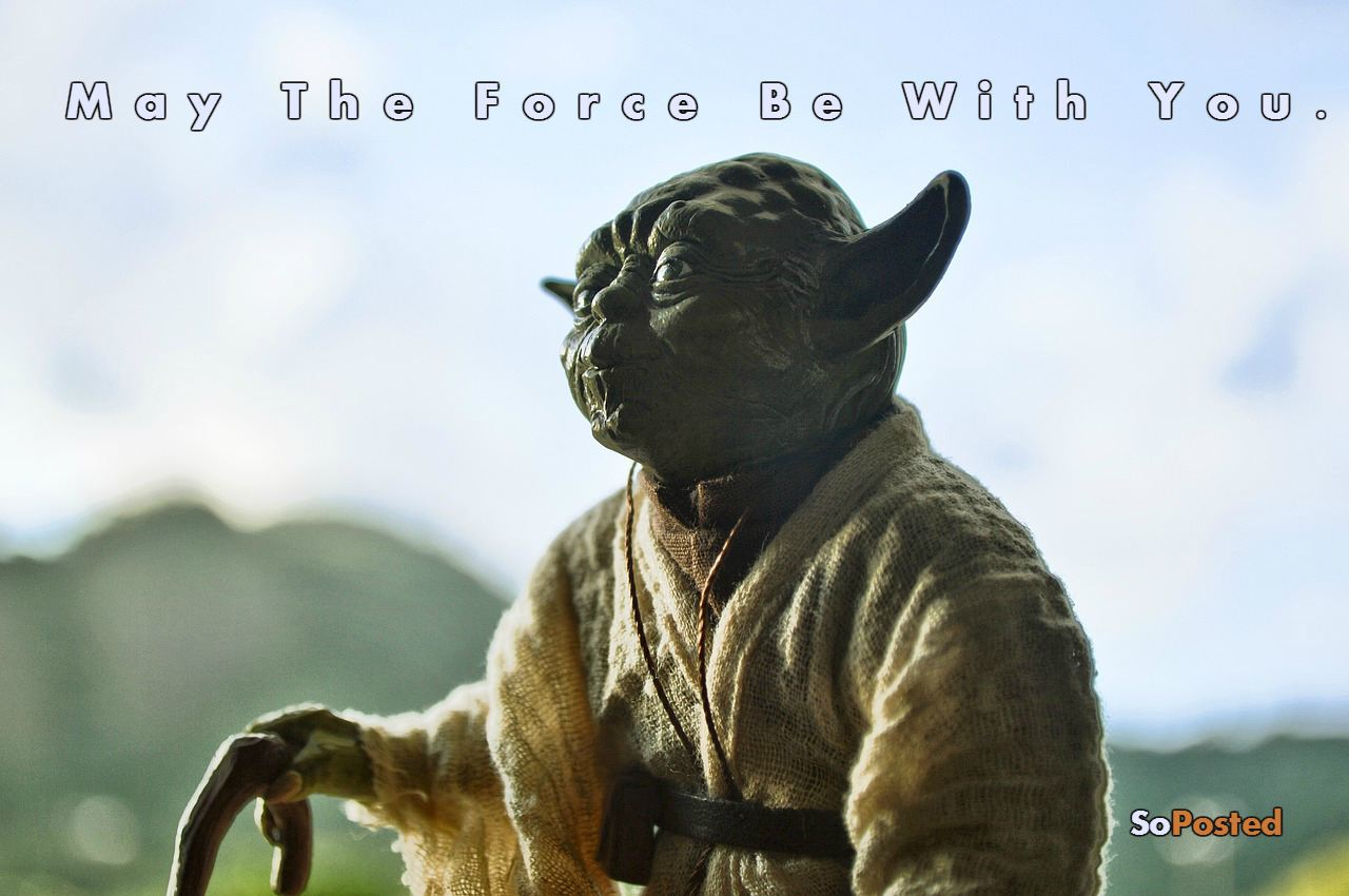 Yoda: Ultimate Quotes By The Jedi Master
