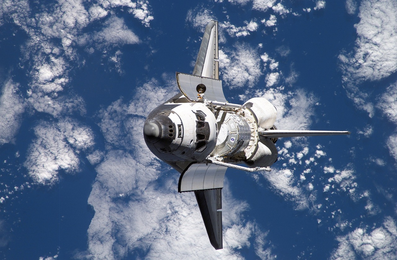 Dream To Explore Space? Here Are 10 Animal Astronauts Who Have Been There Done That!