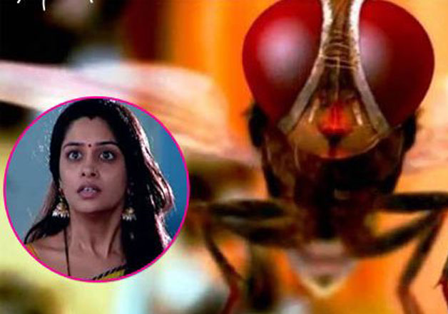 Twitterati Makes Fun Of 'Sasural Makhee Ka' as Simar Turns Into 'Fly'