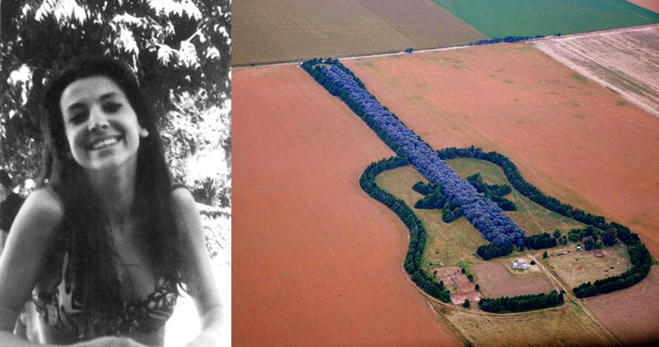 After Death Of His Wife, This Man Planted Guitar-Shaped Forest So That She Could See It ...